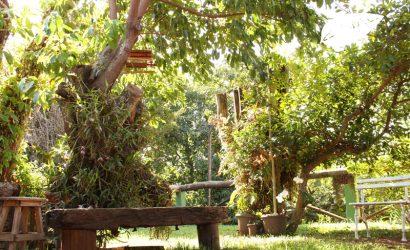 Guappo-Hostel-jardim-001