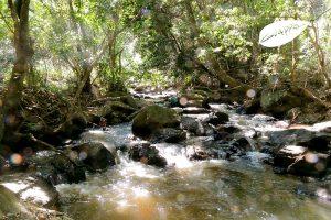 cachoeira dos félix – Bueno Brandão – MG